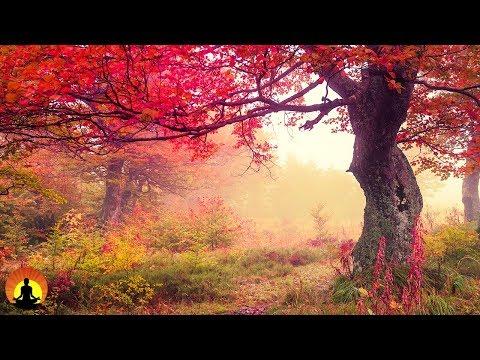 Healing Meditation Music, Relaxing Music, Calming Music, Stress Relief Music, Peaceful Music, �