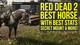 Red Dead Redemption 2 Best Horse WITH BEST STATS, Easy To Get Amazing Saddle & More (RDR2 best horse