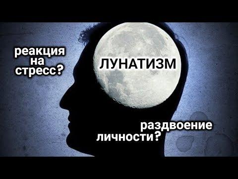 Лунатики. Тайная жизнь
