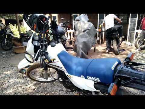 Dice Man buys Rafiki to tour Kenya, Tanzania