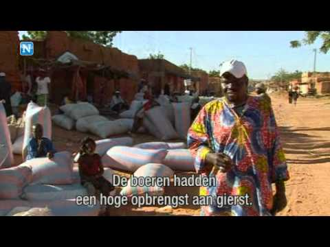 Verwoestijning in Mali - Video