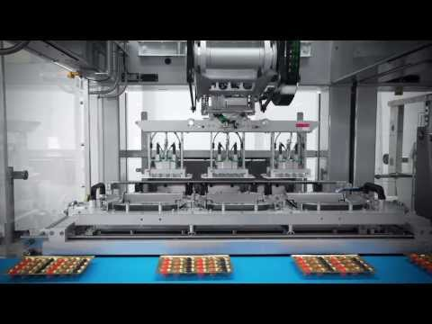 Fully automatic praline packaging line