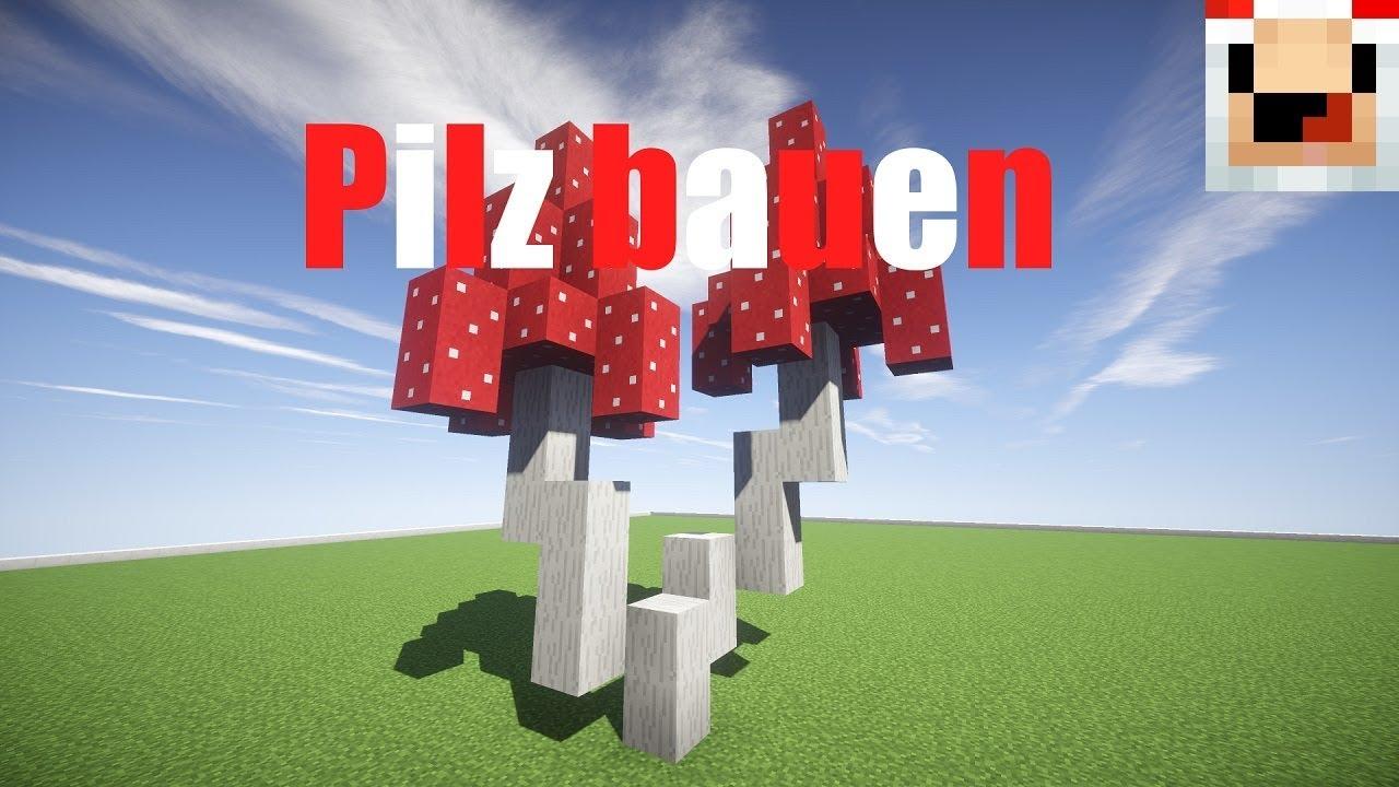 Minecraft Pilze