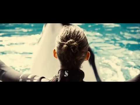 Rust & Bone (2012) - Official Trailer [HD]