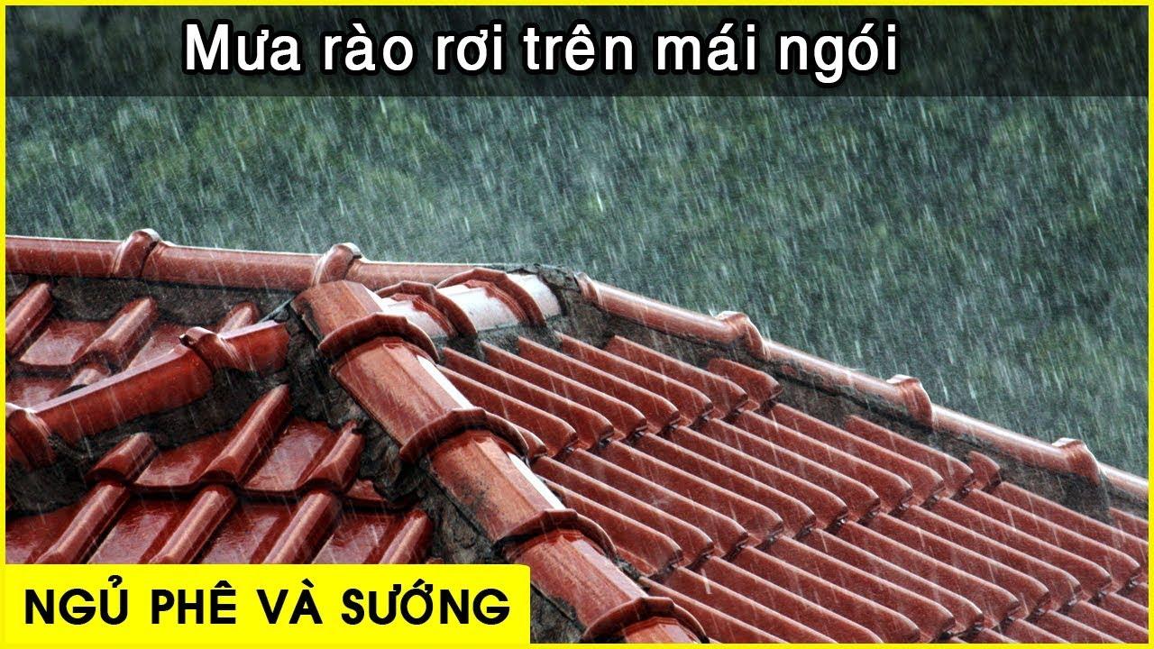 [ Mạnh hơn cả thuốc ngủ ] tiếng mưa rào rơi trên mái nhà | Ngủ cực ngon 「 Nhạc thư giãn 」