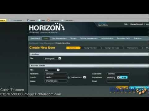 Horizon Hosted VoIP User Guide - Catch Telecom