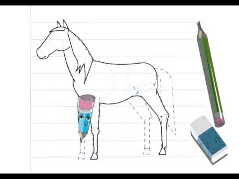 Dessiner un cheval hellokids youtube - Dessiner cheval ...