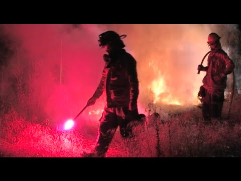 Firefighters Do A Control Burn In A Residential Neighborhood - Firefighting Techniques & Methods