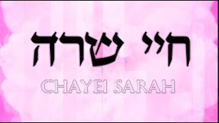 Chayei Sarah - the essence of beauty | Weekly Insights with Rabbi Lankry