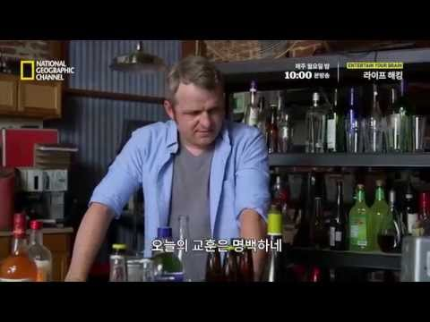 [실험] 음주 측정에 걸리지 않는 방법? 대표이미지