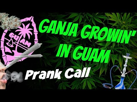 Ganja Growin' In Guam Prank Call