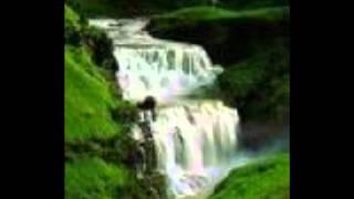W. D. Amaradeva-handapane weli thala