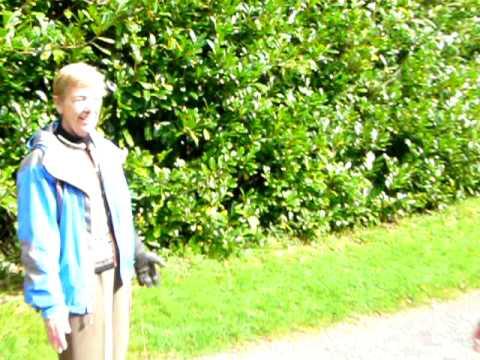 Falconry at Ashford Castle - Ireland Chauffeur Travel