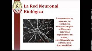 Neurona Artificial Sistemas Inteligentes perceptron