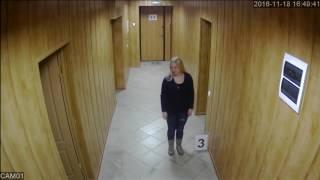 Видеокамера Tigris Thl-d20 коридор