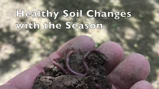 Healthy Soil Changes with the Season