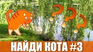 """Найди кота #3 Коты маскируются Игра """"НАЙДИ КОТА"""" за 10 секунд!"""""""