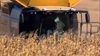 CLAAS LEXION 760 TERRA TRAC  - WORLD RECORDS In Corn