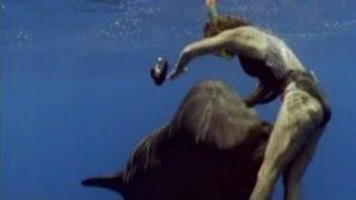 видео Большой старт «Дельфина»