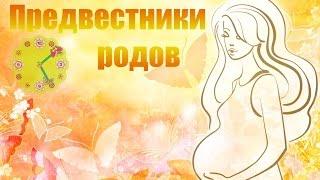 видео 38 неделя беременности: предвестники родов у повторнородящих, вторые роды