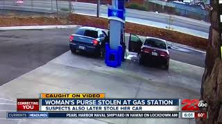 Woman's purse stolen from her car
