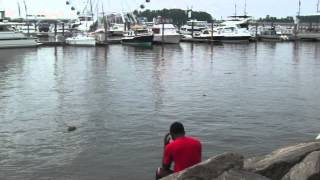 GANG STALKING ME WHILE AT THE PIER ON, JUNE 13, 2015, PART 1