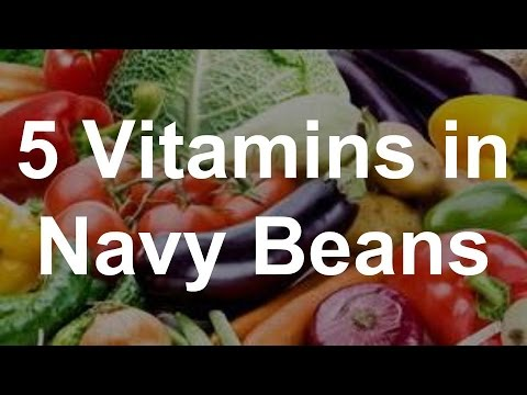 5 Vitamins in Navy Beans - Health Benefits in Navy Beans