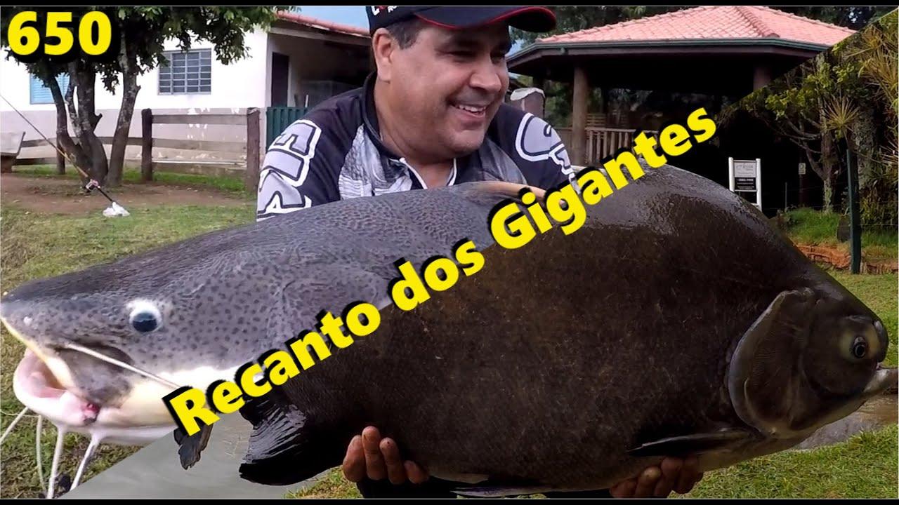 Nem sempre a pescaria é com os gigantes do Recanto dos Gigantes - Programa Fishingtur na TV 650