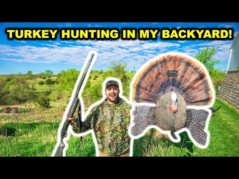 TURKEY HUNTING in My BACKYARD for the FIRST TIME!!!