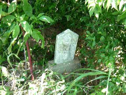 Wm Shaw McCall graves Paris, TN