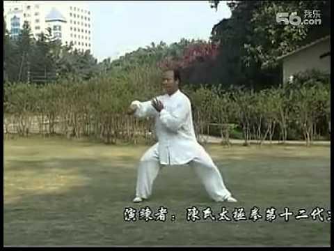 陈式太极拳83式教学_杨合发完美演练 一路 传统陈氏太极拳83式 - YouTube