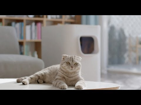Auto-Cleaning LitterBox LavvieBot - Tracks Health, Cleans, and Refills Litter!