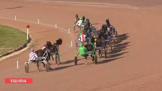 Vidéo de la course PMU PRIX DU HARAS D'HAUFOR