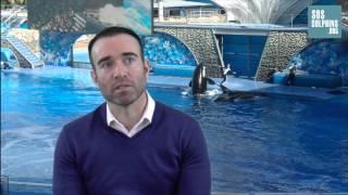 SOSdolphins interviews the former killer-whale trainer John Hargrove