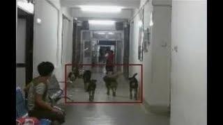 अश्चिमाञ्चल क्षेत्रिय अस्पतालको अवस्था उस्तै – NEWS24 TV