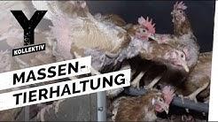 Fleischindustrie - Massentierhaltung schmeckt!