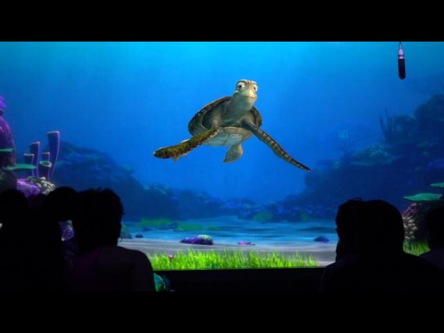 turtle-talk-with-crush-in-seas-pavilion-in-epcot-at-walt-disney-world