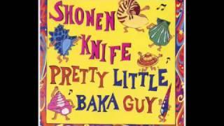 Shonen Knife - Ice Cream City from the album PRETTY LITTLE BAKA GUY...
