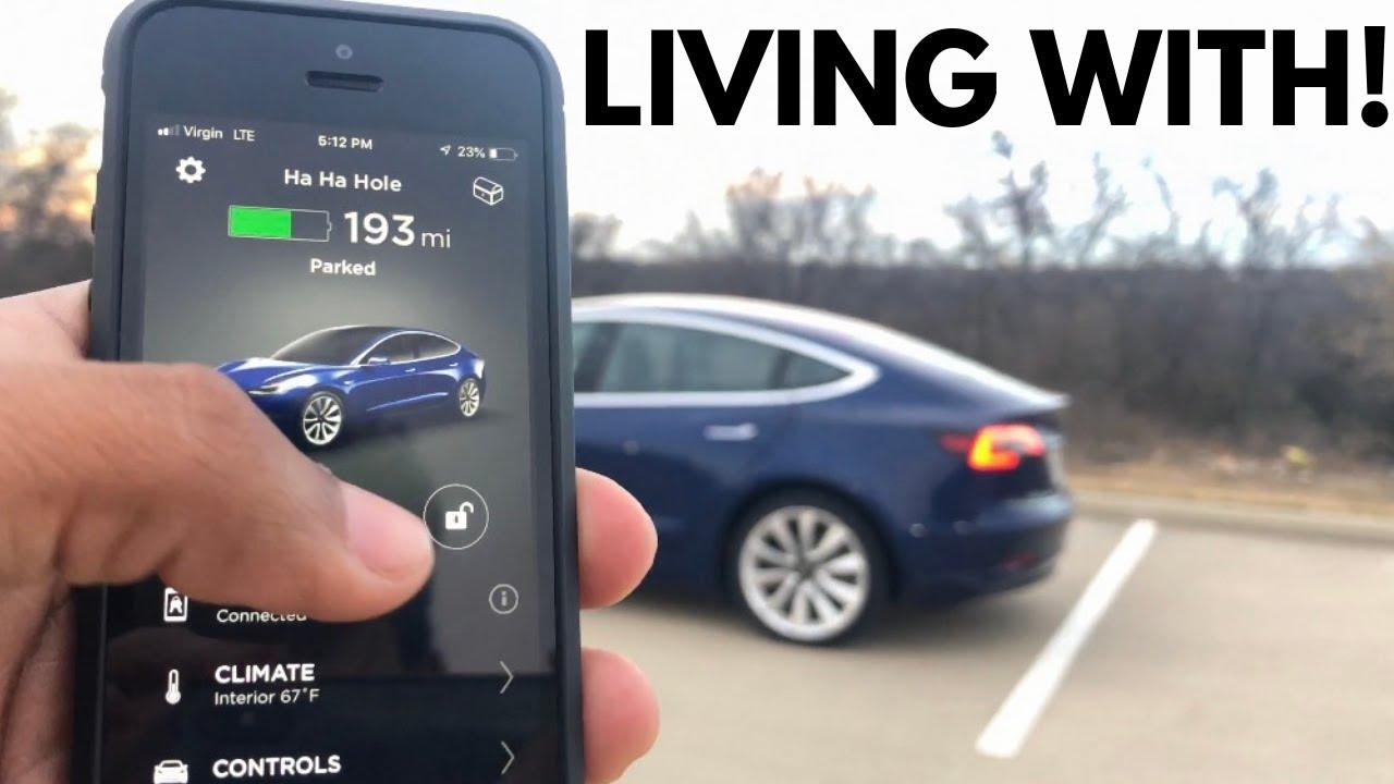 A MUCH DEEPER LOOK!---Tesla Model 3 Long Range RWD In-Depth Review!