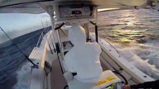 26 Albemarle in rough seas Palm Beach Inlet, Jupiter