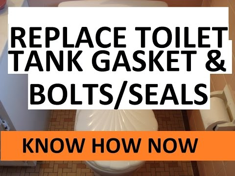 Replace Toilet Tank Bolts and Tank Gasket