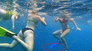 Подводная съемка в ЭКЗОТИЧЕСКОМ МЕСТЕ! Снорклинг Индонезия, Бали