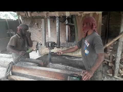 dangerous-teak-wood-cutting-by-super-man/wood-cutting-dangerous-sawmill-asia/dangerous-logging-bill