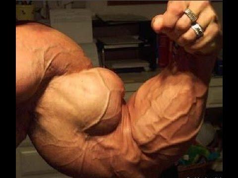 como ganhar biceps rapido com técnicas de treinos de musculação