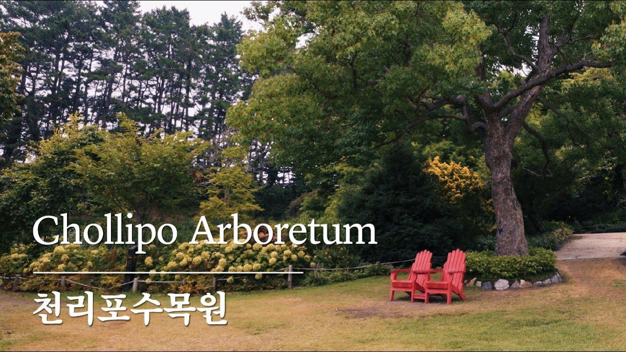 숲이 주인인 정원, 천리포수목원 숲 해설가의 하루 | A day of Forest commentator