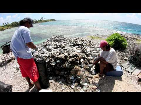 Free Dive Tahiti on Hawaii Skin Diver TV Adventure