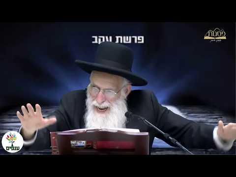 הרב יהודה יוספי - פרשת עקב- HD - שידור חי