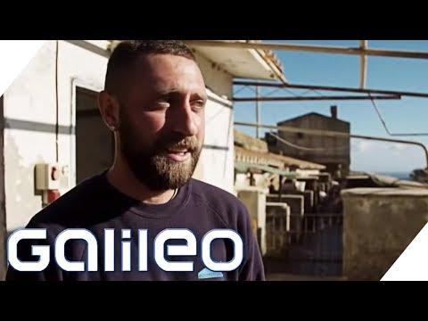 Gefängnis-Insel: Hier laufen die Schwerverbrecher frei herum | Galileo | ProSieben