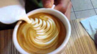 Cafe Departure Lounge Latte Art - Swan