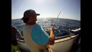 Video Pescaria de pargos em Vila Nova de Milfontes (JIG) download MP3, 3GP, MP4, WEBM, AVI, FLV Desember 2017